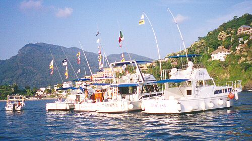 Vargas Sportfishing Fleet - fishing charters in Zihuatanejo Ixtapa Mexico
